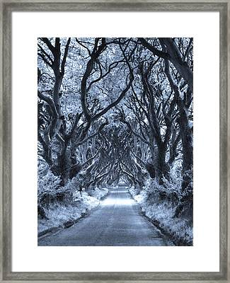 Path To The Soul Framed Print