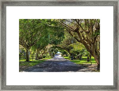 Path To The Waters Edge Framed Print