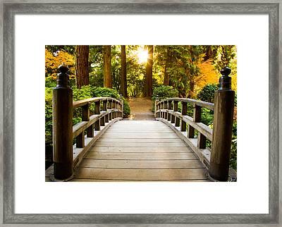 Path To Wisdom Framed Print