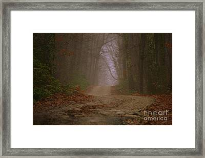 Path To Wolf Den  Framed Print