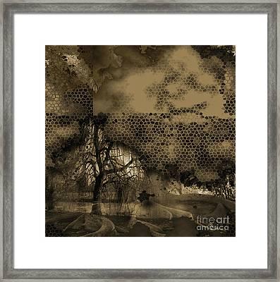 Path Framed Print by Yanni Theodorou