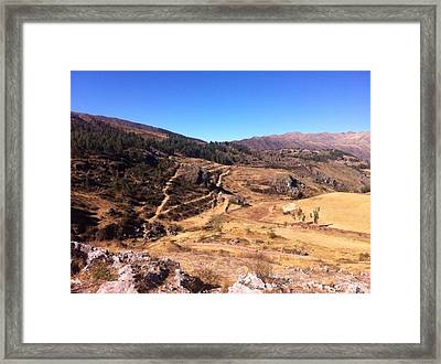 Paths Of Life Framed Print by Savanna  Jones