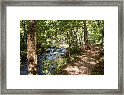 Framed Print featuring the photograph Pathway Along The Springs by John M Bailey