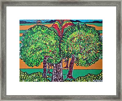 Pathway Home Framed Print by Matthew  James