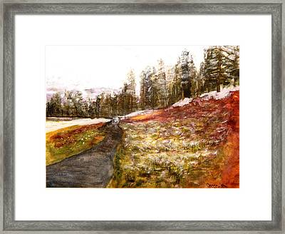 Pathway In The Tetons Framed Print