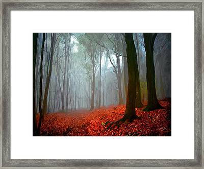 Pathway Framed Print