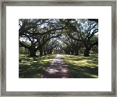 Pathway Framed Print by Karla Kernz
