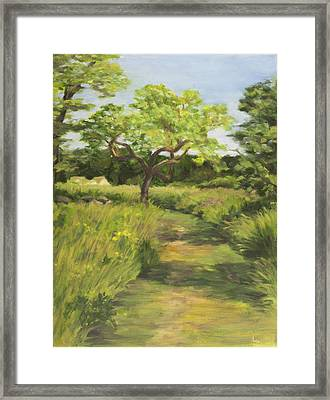 Pathway Leading Home Framed Print by Elena Liachenko