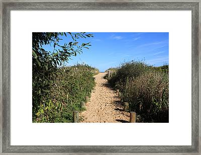Pathway Leading To Omaha Beach Framed Print