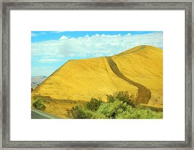 Pathway Framed Print by Mamie Gunning