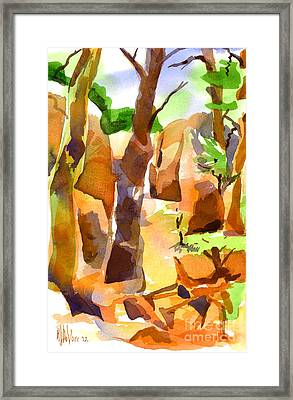 Pathway Through Elephant Rocks 1b Framed Print by Kip DeVore