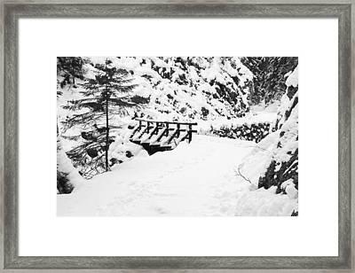 Pathway Through The Snow Framed Print