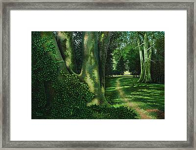 Framed Print featuring the painting Pathway Through The Sycamores by Michael Frank