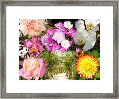 Pathway To Paradise Framed Print by Van Ness