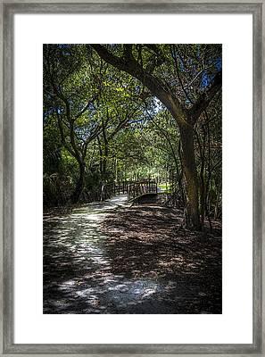 Pathway To The Bridge Framed Print