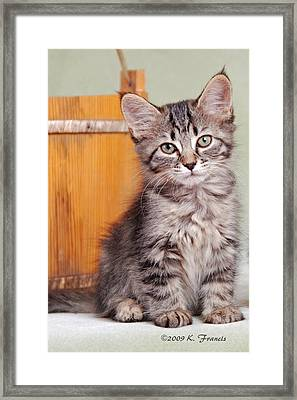 Patience Framed Print by Kenny Francis