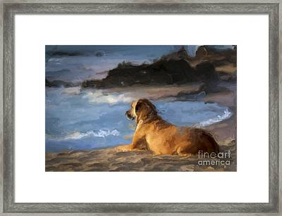 Patient Loyalty Framed Print