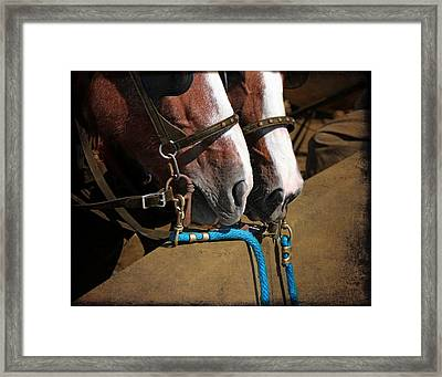Patiently Waiting Framed Print by Davandra Cribbie