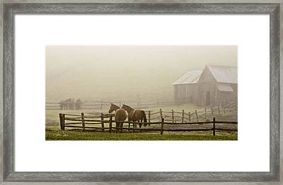 Patiently Waiting Framed Print by Joan Davis