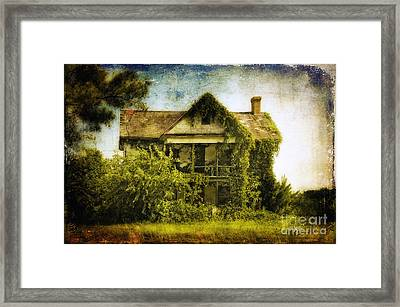 Patiently Waiting Framed Print by Lois Bryan