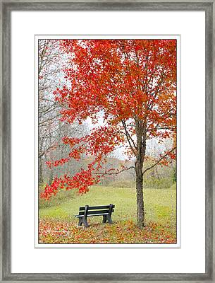 Patiently Waiting Framed Print by Mariarosa Rockefeller