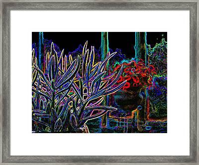 Patio Plants Framed Print