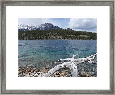 Patricia Lake - Jasper Framed Print by Phil Banks