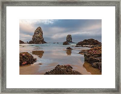 Patrick And Friends Visit Cannon Beach Framed Print