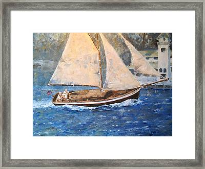 Patriot At Catalina Lighthouse Framed Print