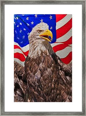Patriot Framed Print by Matthew Bamberg
