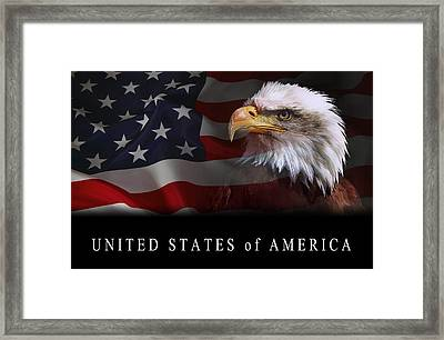 Patriot United States 2 Framed Print by Daniel Hagerman