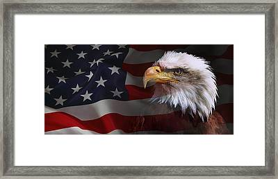 Patriot United States Framed Print by Daniel Hagerman