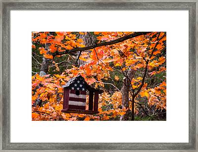 Framed Print featuring the photograph Patriotic Birdhouse - 01 by Wayne Meyer