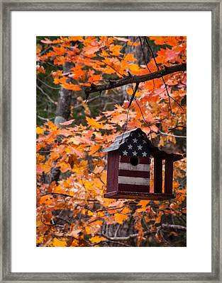 Framed Print featuring the photograph Patriotic Birdhouse - 02 by Wayne Meyer