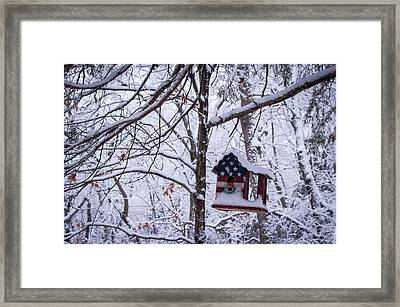 Framed Print featuring the photograph Patriotic Christmas by Wayne Meyer