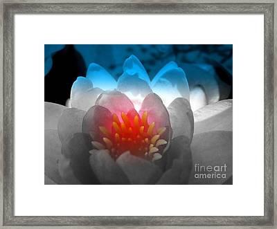 Patriotic Flower Framed Print