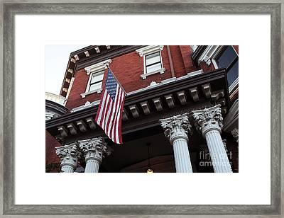 Patriotic Savannah Framed Print