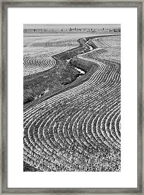 Patterns 1 Framed Print by Don Hall