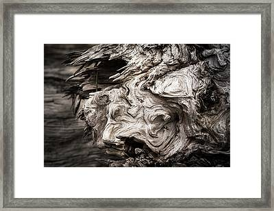 Patterns Are Found In The Driftwood Framed Print
