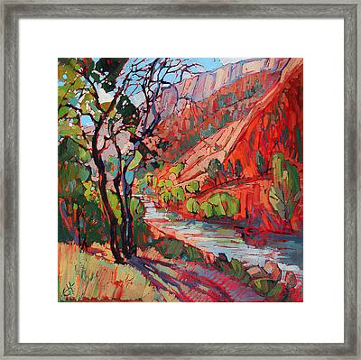 Patterns In The Shade Framed Print