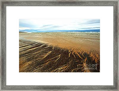 Patterns In The Tides Framed Print