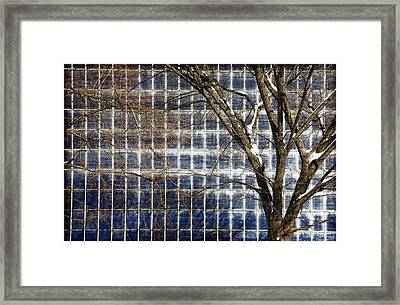 Patterns Of Winter Framed Print by Joanna Madloch