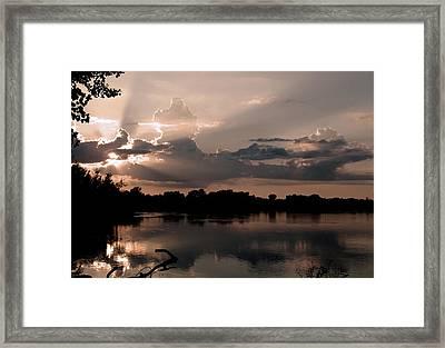 Pause Framed Print by Debi Dmytryshyn