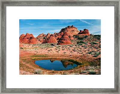 Paw Hole Reflections Framed Print by Mike  Dawson