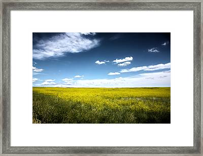 Pawnee Grasslands Framed Print