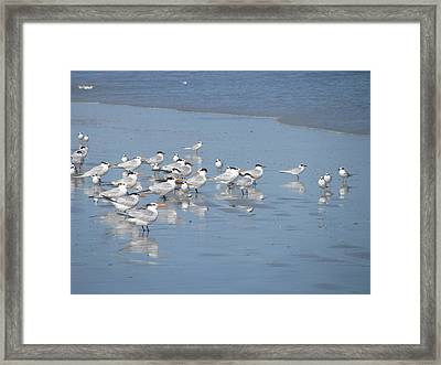 Pay Attention Framed Print