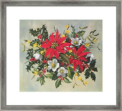 Christmas Flowers Framed Print