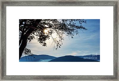 Peace 2  Framed Print