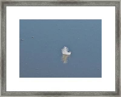 Peace Framed Print by Alison Richardson-Douglas