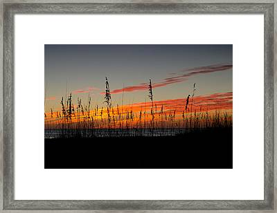 Framed Print featuring the photograph Peace And Love by Melanie Moraga